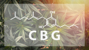 CBG vs CBD: What's The Difference - USA Medical